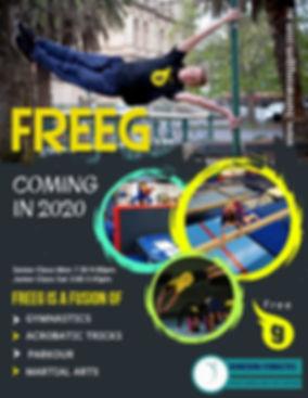 FreeG Poster 2020.jpg
