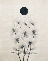 Totem Constructions for Flowers and Plants: The Moon Orchid