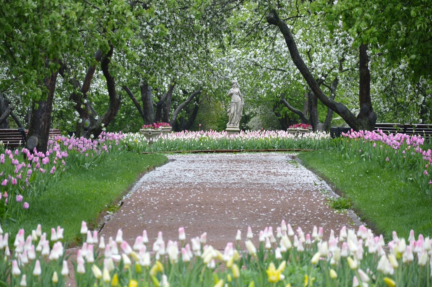 kolomenskoye park1
