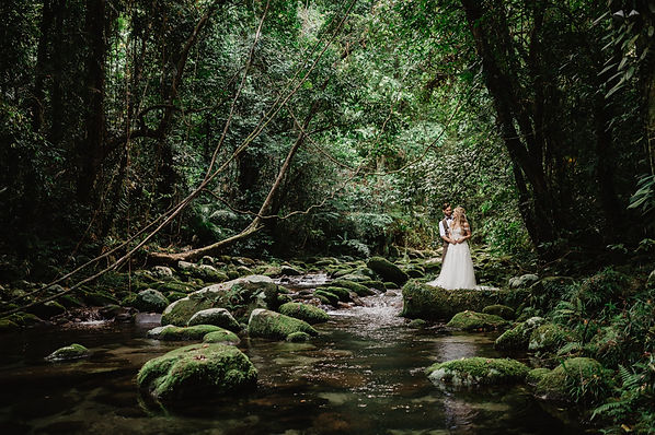 Rainforest Wedding Location