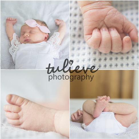 Arlie's Newborn Photography