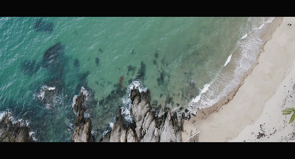 Port Douglas Wedding Videography