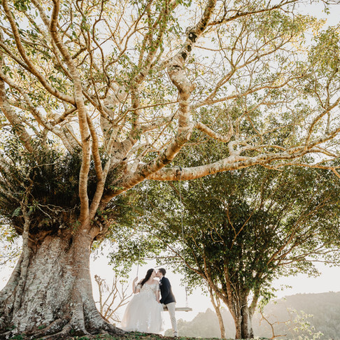 HOW TO ELOPE IN PALM COVE, PORT DOUGLAS AND CAIRNS SURROUNDING