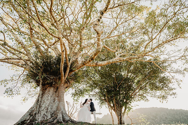 Atherton Wedding Venue