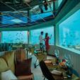OZEN LIFE MAADHOO - M6M Underwater Resta