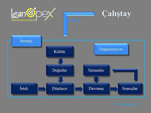 Operasyonel Mükemmellik Çalıştayları | OPEX