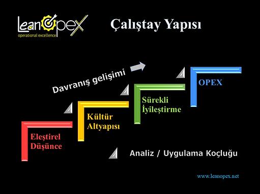 Operasyonel Mükemmellik Çalıştay Yapısı -Leanopex