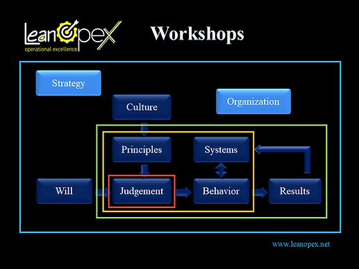 Operational Excellence Workshops - Leanopex.png