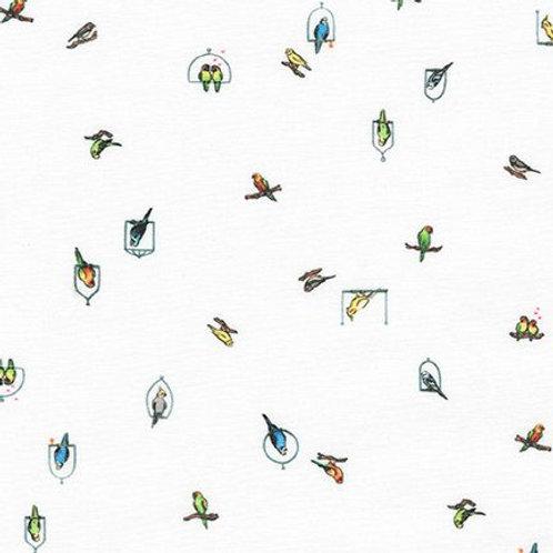 Robert Kaufman - Petit Birds