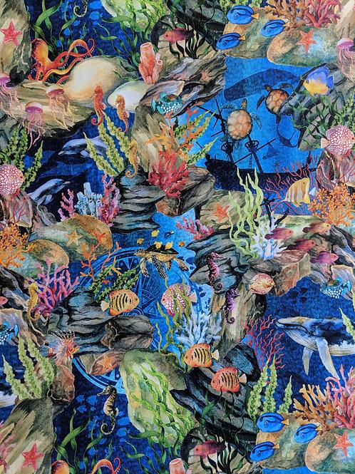 Calypso - Jason Yenter - Reef