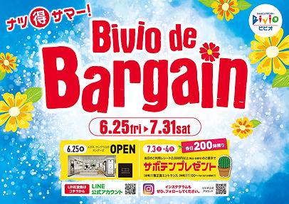 biviobargain625.jpg