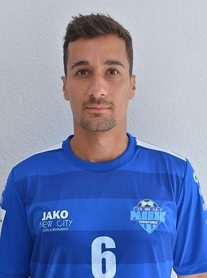6. Nenad Stankovic.JPG