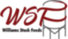 WDF Colour Logo.jpg