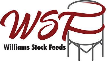 WDF Colour Logo.jpg