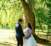 Gazing Under the Willow Tree