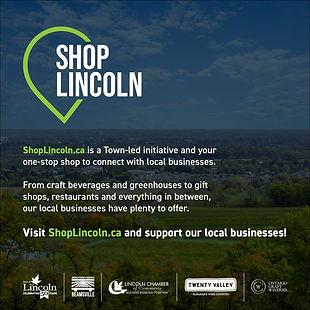 shop lincoln.jpg