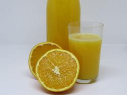 Fresh Squeezed Oranges