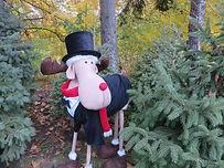 Mistletoe Moose Mascot