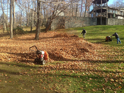 Spring and Fall Cleanup at Coupe's Cuts Lawn Service