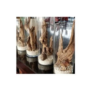 Coastal Style Driftwood