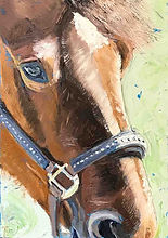 Original oil painting of a horse by TracyLesterArt
