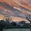 Thumbnail: Sunset through the trees