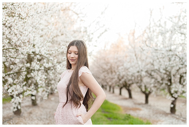 The Blushing Orchards of the Central Valley