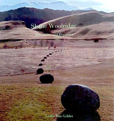 Shane's book cover.jpg