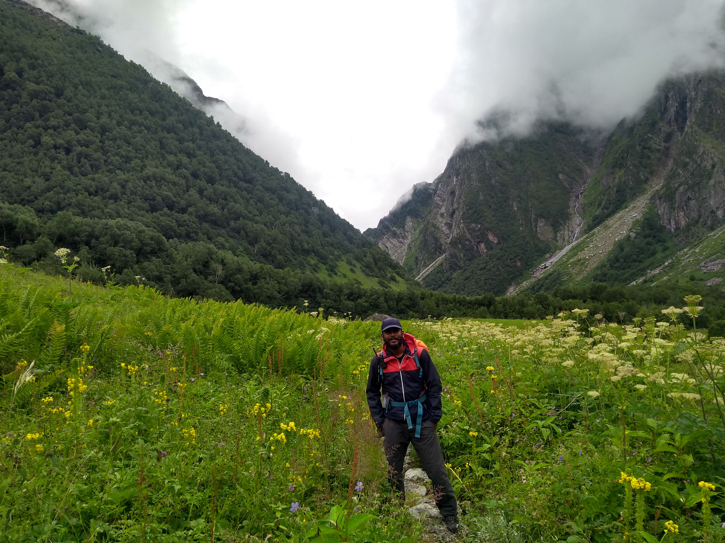 Lost in the Valley of Flowers