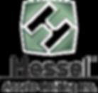 Hessel Holding, Inserção de estratégias, consultoria, holding, investimentos, orientação, controle e auditoria de empresas.