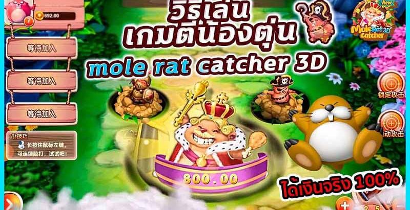 รีวิวเกมได้เงินจริงเกมตีตุ่น Mole Rat Catcher 3D Playsland