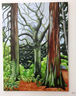 Michele Johnsen - Trees