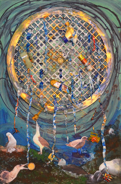 Pacific Gyre - Albatross Eat the Pretty Plastic