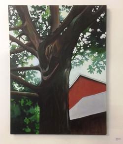 Michele Johnsen - Light Through Tree