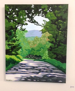 Michele Johnsen - Trees and Road