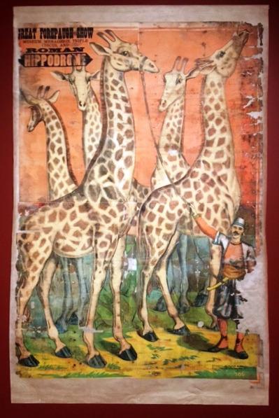 Circus Poster - Giraffes