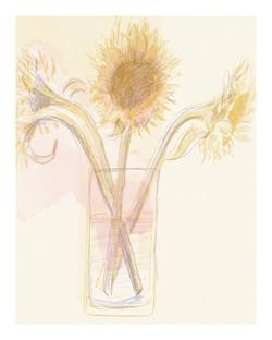 'Sunflowers'