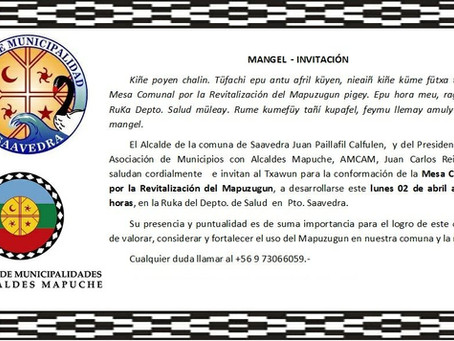 Municipios AMCAM inician trabajo para revitalización del mapuzungun en sus comunas.