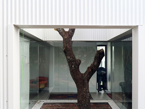 single family house for a dentist - madrid