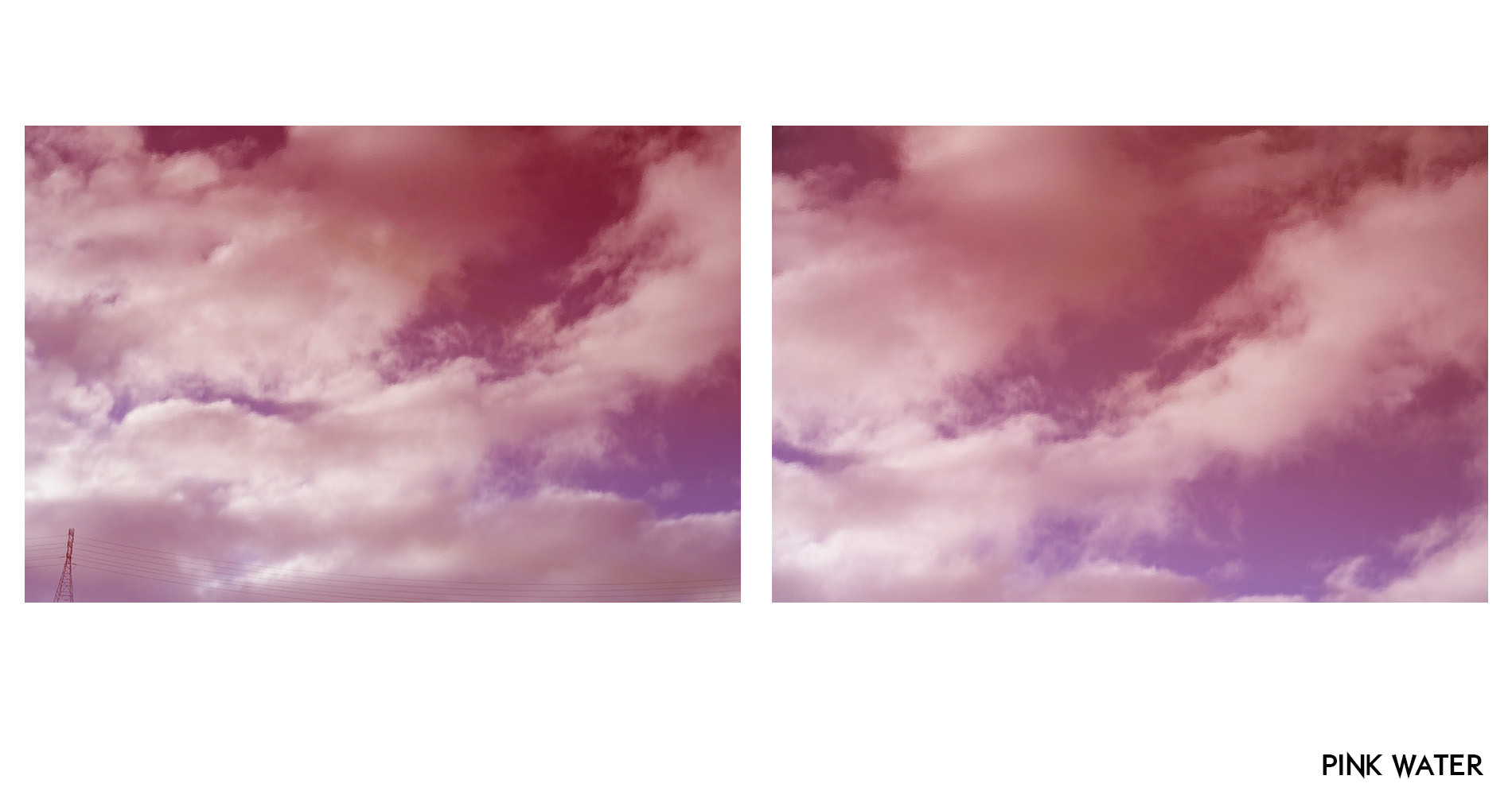 pinkwater.jpg