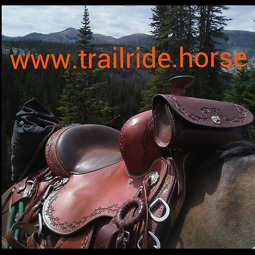 TnT Trail Adventure Saddle made by TUCKER Saddlery