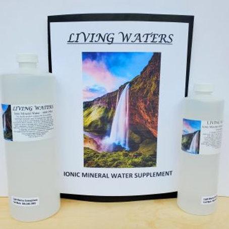 IO Mineral Water Supplement (Qt. Sz.4,000 PPM)