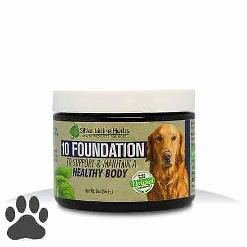 #10 Dog-Foundation, 2 oz. powder, jar