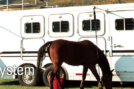 Hi-Tie™ Trailer Tie System (per horse)