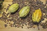 cocoa-beans-373813__340.jpg