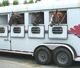 horse_trailer1.jpg