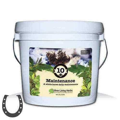 #10 Maintenance - Horses 300 serv/5 lb. bucket