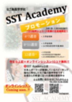 sst_page-0001.jpg