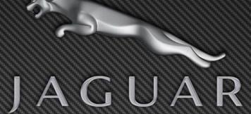 Logo Jaguar.jpeg