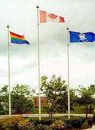 The York Pride Festival: LGBTQ Awareness in York Region